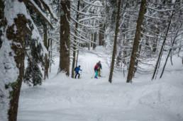 Skitour Brauneck